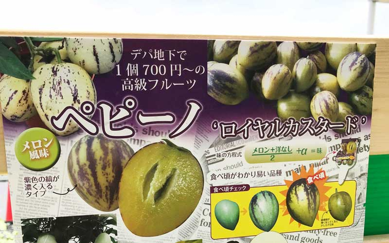 家庭果樹|ペピーノ|王宮が愛したフルーツ