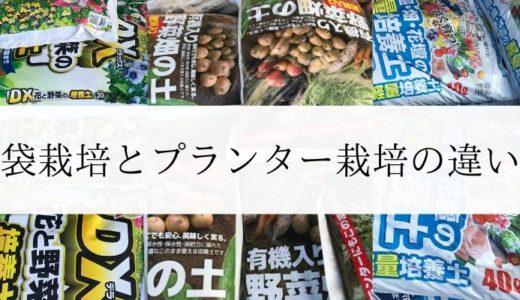 簡単、お手軽にできる家庭菜園|袋栽培とプランター栽培の違い