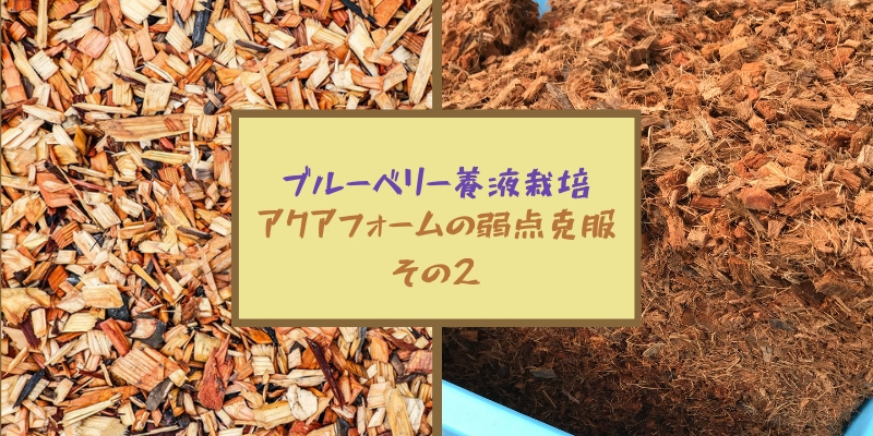 ブルーベリー養液栽培|アクアフォームの弱点を克服 その2(ココヤシチップの選び方)