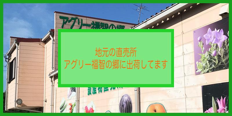 アグリー福智の郷(常設農産物直売所)に出品しています|福岡県直方市